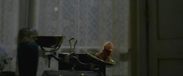 《怪獸_3》拍攝地點前進中國?J·K·羅琳將推特換成了「張家界」暗示騶虞要回老家!_(18).jpg