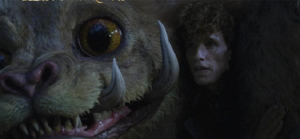 《怪獸2》紐特安撫「騶吾」這場戲原來是這樣拍的 去除特效真實場景小雀斑超尷尬!_(2).jpg