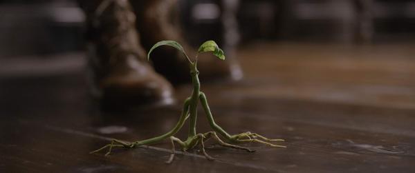 《怪獸2》紐特安撫「騶吾」這場戲原來是這樣拍的 去除特效真實場景小雀斑超尷尬!_(11).jpg